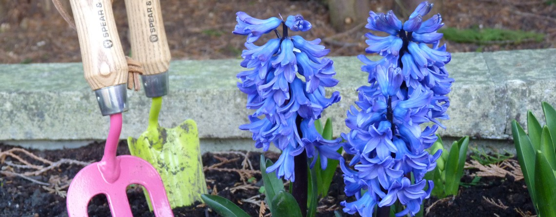 Gardening Services Keynsham